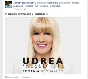 baconschi udrea facebook, cromoplatin, photoshop
