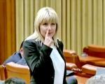udrea semn mafie parlament