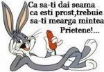 ca-sa-iti-dai-seama-ca-esti-prost_resize